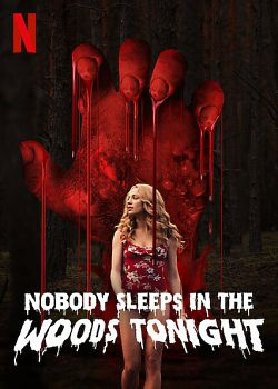 Nobody Sleeps in the Woods Tonight - FRENCH HDRip